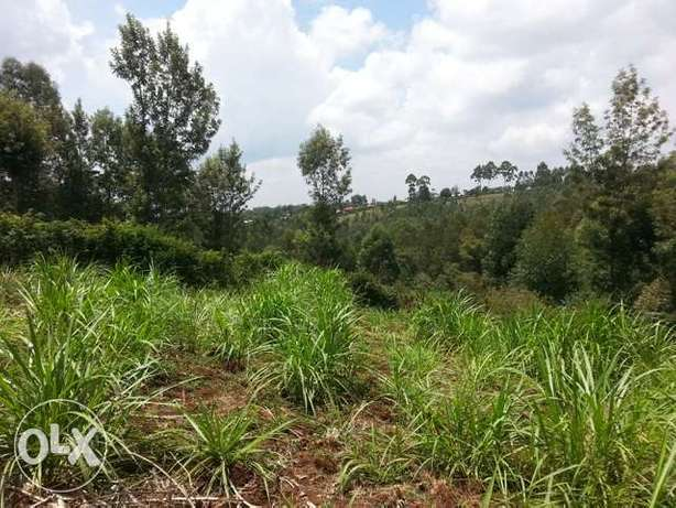 I/ 8 an acre for sale in Kibiko ngong Ngong Township - image 3