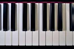 Piano and Music Training Offer!!