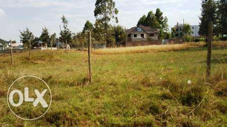 Kiambu Kamiti road Mugumo 1/4 Acre Plots for Sale Nairobi CBD - image 4
