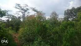 20acres in Mukima, Nanyuki