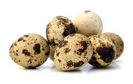 Organic .Quail Eggs and Organic Chicken Eggs