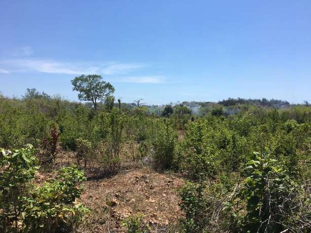 Two 2.5 acres plots in galu kinondo beach on row 3 and 4 for sale Mombasa Island - image 5