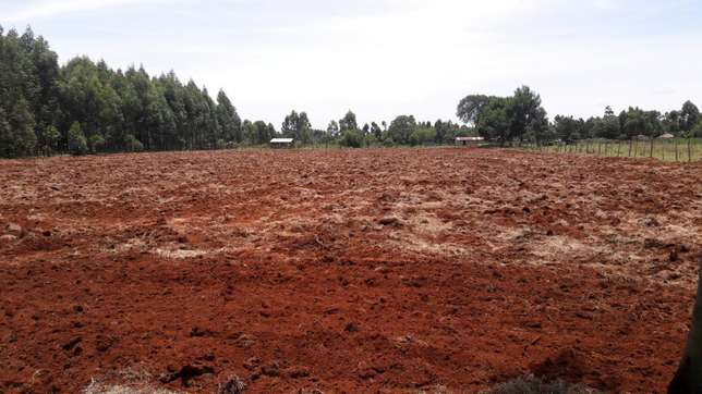 20 acre farm Eldoret South - image 4