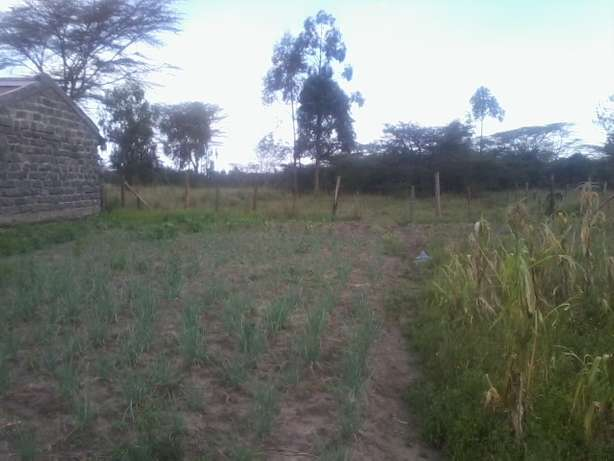 2 adjacent 1/8th acre vacant plots for sale behind Laikipia Campus Nakuru East - image 1
