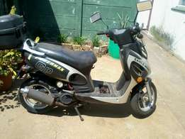 eagle wing power max gp for sale