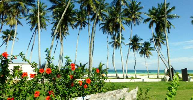 Galu diani 5 bedroom furnished house to let Diani Beach - image 8