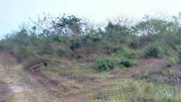 8Plots of Land for Sale