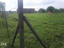 plot for sale in juja farm