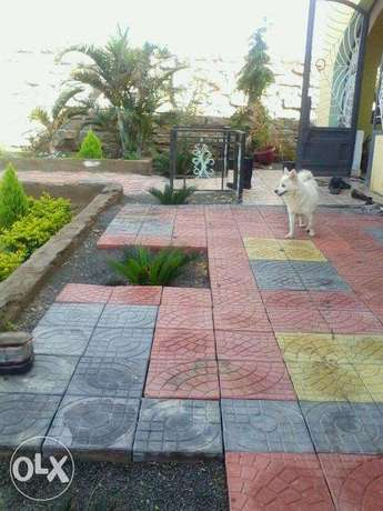 Landscapers Professionals by KENJI contractors & landscapers Nairobi CBD - image 4