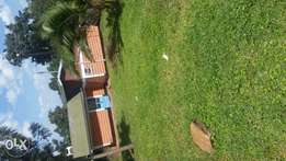 House for rent at riverbank kisii town