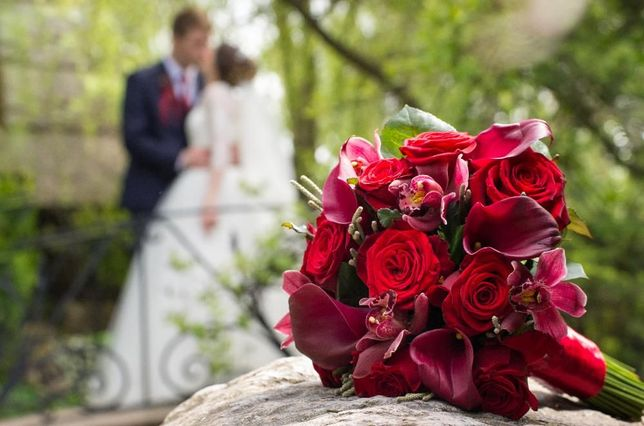 68ed6e640d6f02 Весільний фотограф, професійні фотосесії - Розваги / Мистецтво ...