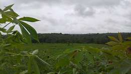 Distress Acres of Land at Epe for sale 180k per plot