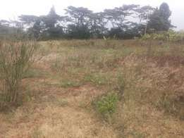 Land for sale going for 1.6M