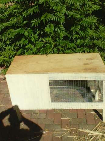 New rabbit cage for sale Brits - image 4