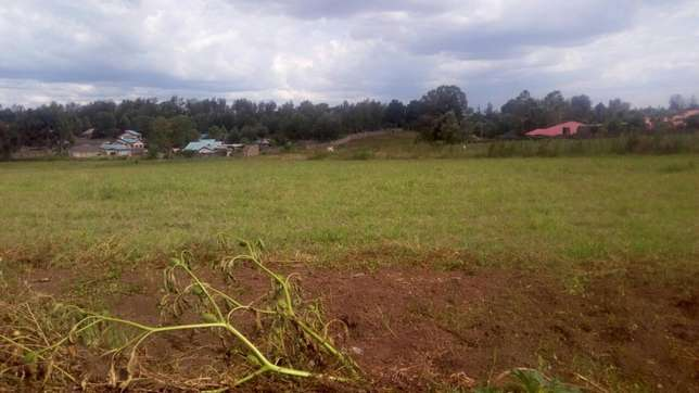 For quick sale Several 50/100 plots Nakuru East - image 5