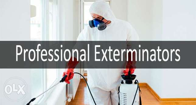 Pest control services Jast check one time
