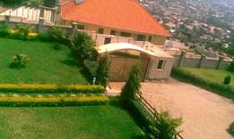 Super Executive Lubowa House with Magnificent Hill View
