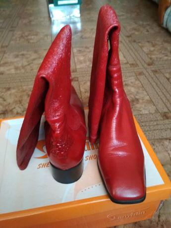 7f8cbffb110 Продам итальянские кожаные сапоги 38 разм.  1 200 грн. - Женская ...