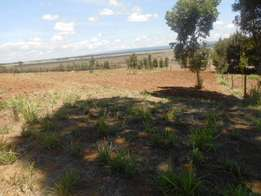 2acres in Nyandarua - Simbara