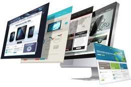 Professional and Responsive Website