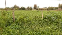 1/8 plots for sale in sunrise estate Njoro, 600mts from tarmac.