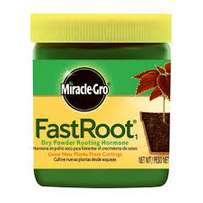 organic rooting medium. Put cuttings to develop roots and shoots fast
