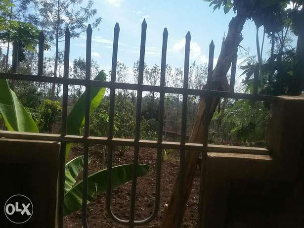 kenol plots 1/2 acre. 2km from the highway Thika - image 2