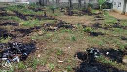 Two plots of land, 16.5m per plot, total of 33m for the two plots