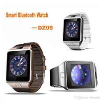 DZ09 Smart Watch - Phone Companion or Standalone Phonewatch - 4 Colour