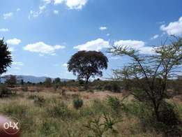 50 acres for sale in kelelwa,muserechi koibatek