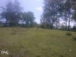 Land for sale in kitui ...at ngiini .