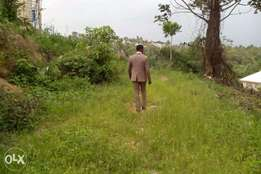 free land for sale