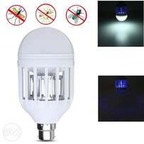 insect killer & bulb 15w
