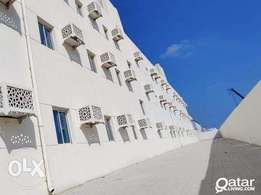 110 Room - Brand new Labor Camp For Rent