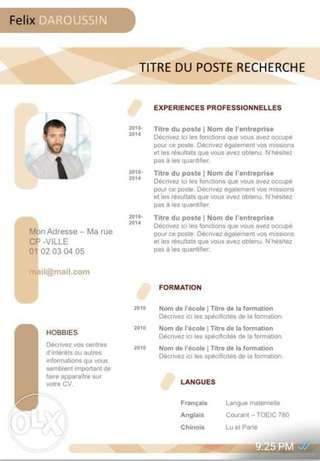 Professional CV, CV Writings and CV Designing