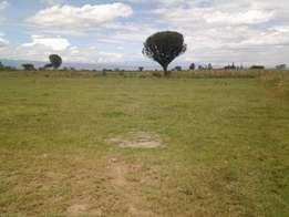 5 Acres for sale in Elementaita - Nakuru county