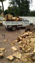 Tree felling fully insured