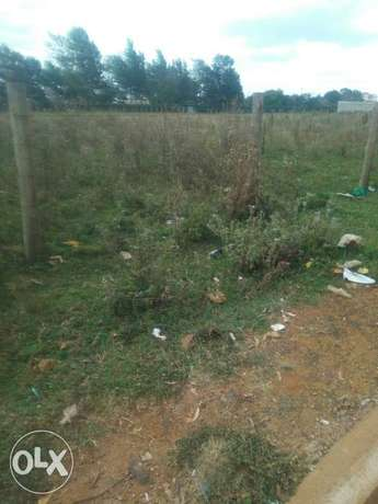 Land kamkunji 40 peercels of land 1/4 1.65m good for homes Eldoret East - image 3