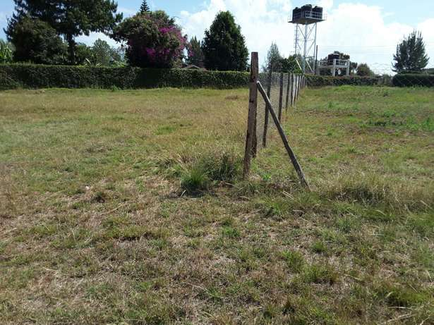 Quarter (1/4) Acre land in Ngong - Kerarapon Ngong Township - image 3