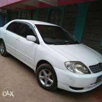 Clean, well maintained. Fully loaded NZE for sale