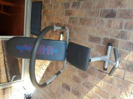 Ab King Pro- Gym/exercise equipment