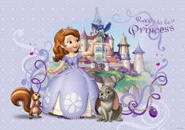 Sofia the first large banner