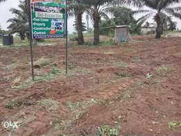 Value estate plot at 300 Sqm for sale