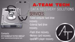 Data recovery services.