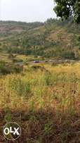 PRIME plots for sale, near MURANGA TOWN, 50 by 100. First come basis.