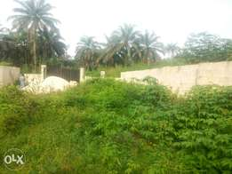 LANDED PROPERTY FOR SALE!!! With gate, fence and C of O
