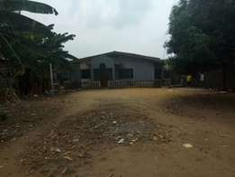 For Sale 4bedroom bungalow setback on a plot of land at Igando Lagos