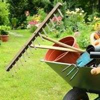 CHEAPPER & Affordable Garden services