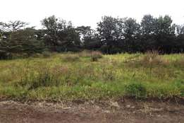 Two 1/4 plots in rongai for sale