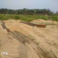 Affordable land with documents